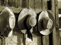 Row of three hats