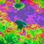 """""""Fairy Garden Purple Pond"""" by artofbeing"""