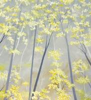 Buttercup Forest