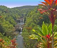 Jungle Waterfall Hilo Hawaii 1