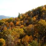 """Fall in Shenandoah"" by John_Simmons"