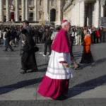 """Roman Cardinal 6"" by"