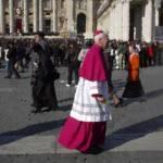 """Roman Cardinal 4"" by"