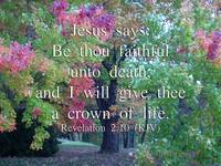 Be Faithful Unto Death (2)