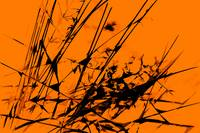 Strike Out Orange and Black Abstract