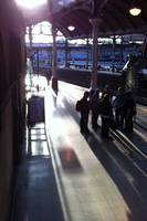 Afternoon Light in Newcastle Central Station