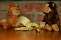 banana and monkeys