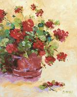 Pot of Red Geraniums