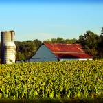 """Old Tobacco Farm"" by SAPhoto"