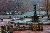 Flurries At Bethesda Terrace