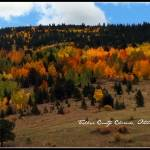 """""""Fall Patchwork"""" by iThinkMedia"""