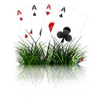 four aces behind grass reflected