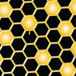 """honey comb background"" by robertosch"