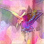 """Butterfly"" by venusian"