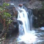 """""""Strawberry Canyon Waterfall"""" by photoartful"""