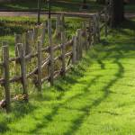 """Fence Lines & Shadow_7385"" by davies"