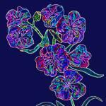 """""""Flower 8"""" by kostliva"""