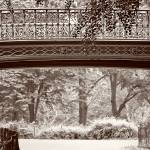 """Bridge in Central Park New York"" by jamiestarling"