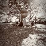 """Moore Square Acorn Two  Cityscape Photography-"" by jamiestarling"