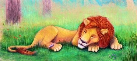 The Lion Takes a Nap