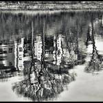 """Abstract River Reflection"" by waynelogan"