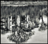 Abstract River Reflection