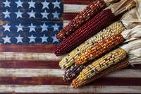 Indian corn on American flag