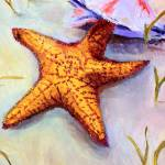 """Starfish"" by ellelbrown"