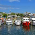 """Oak Bluffs Marina, Martha"