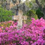 """Old marble cross with flowering azaleas"" by Landbysea"