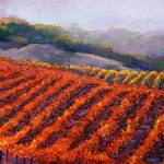 """Sonoma Vineyard"" by BCArt"