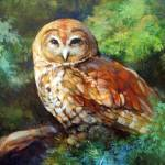"""Barred Owl"" by TonjaSell"