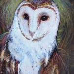 """Barn Owl 2"" by TonjaSell"