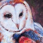 """Barn Owl 3"" by TonjaSell"