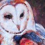 """Barn Owl 3"" by TonjaSell"