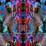 """Animal Totem"" by roshven"