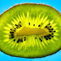 Kiwi Fruit Art Prints & Posters by Tracie Kaska