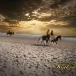 """HorsesBeach"" by NelsonWatkins"