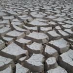 """""""Mojave Mud"""" by FlaminCatDesigns"""