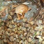 """""""Catacombs of Paris"""" by travelingmcmahans"""
