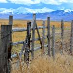 """Montana Fence"" by linnea"