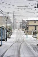 2013 Snow in Tokyo