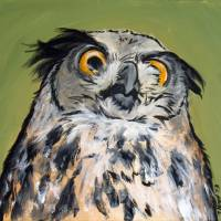 Disapproving Owl Art Prints & Posters by Jennifer Kroll