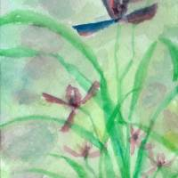Four Gentleman: Wild Orchid Art Prints & Posters by Artemis Logan