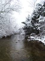 Cold River Creek 2
