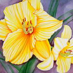 """Day Lilies"" by ckjonesart"