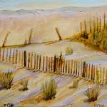 """Beach Fences"" by ckjonesart"