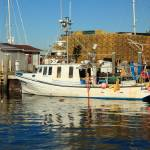 """Fishing Boat and Docks in Newport, Rhode Island"" by RoupenBaker"