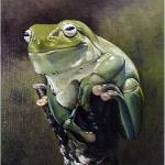 """Green Frog"" by ZiyaEris"
