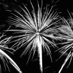 """""""Fireworks Wall Art"""" by jessicadawn"""